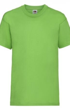 Kids Valueweight Tee Lime 164